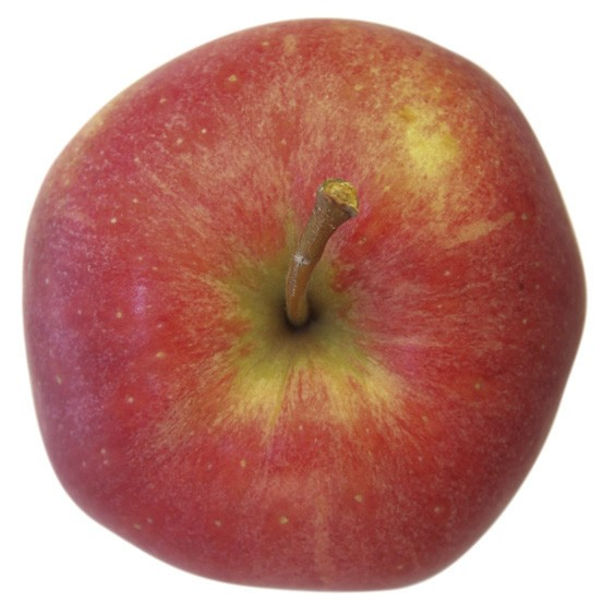 Gala, Apfel Busch, oben