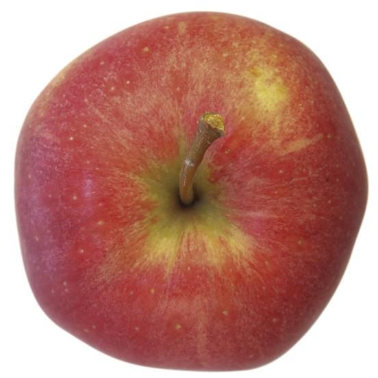 Gala, Apfel Halbstamm, oben