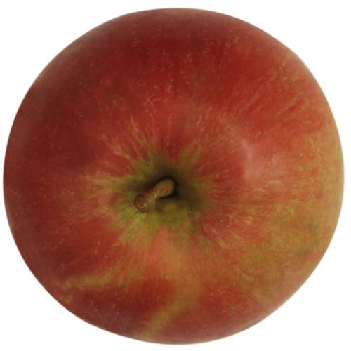 Idared, Apfel, oben