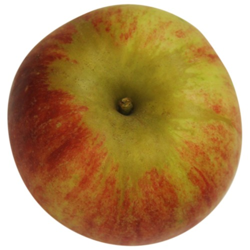 Prinz Albrecht von Preussen, Apfel oben