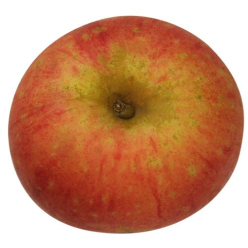 Rote Sternrenette, Apfel oben