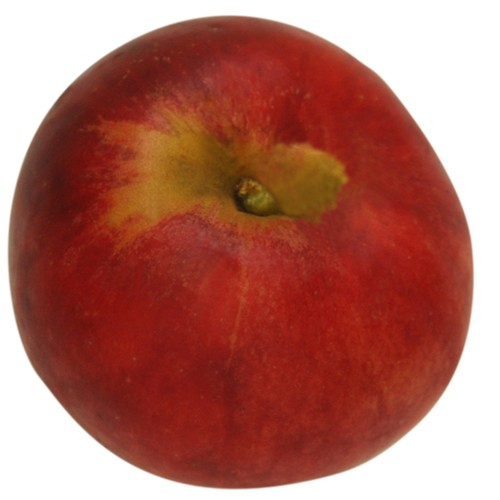 Roter Gravensteiner, Apfel oben
