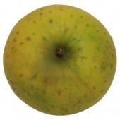 Ananasrenette, Apfel Busch, oben