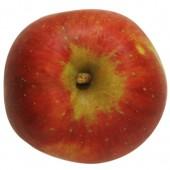 Kaiser Wilhelm, Apfel, oben