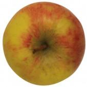 Topaz, Apfel oben
